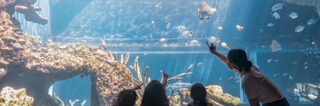The Apurva Kempinski Bali gears up for a joyful Easter celebration