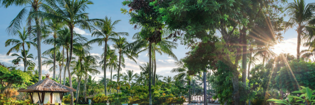 CELEBRATE 30 YEARS OF BALI'S DISTINCTIVE RESORT AT THE LAGUNA, A LUXURY COLLECTION